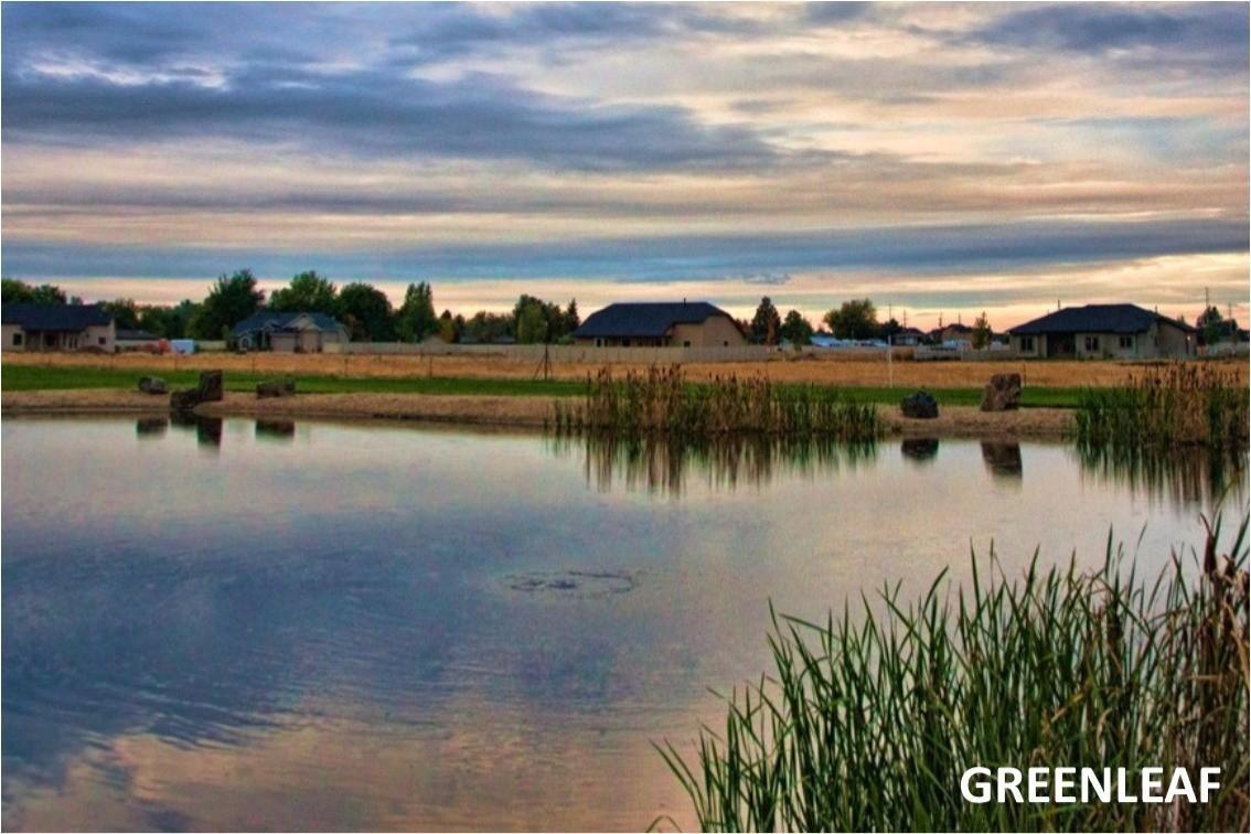 Greenleaf, Idaho - Angela Mae Schlagel